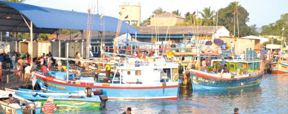 Fishing boats at Negombo, one of the busiest and oldest fishing harbours in Sri Lanka. PICTURE BY VIPULA AMERASINGHE