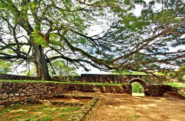 Katuwan Fort in a green and shady setting