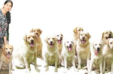 Shirin Merchant, dog trainer and behaviorist. Pic: Shan Rambukwella