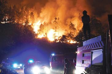 Firefighters try to extinguish a forest wildfire in Colmeal in central Portugal  on 21 June. Pic:AFP/Getty Images