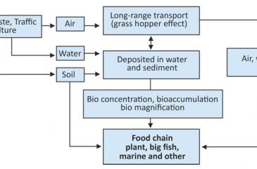 Transportation and accumulation pathways of POPs in the environment