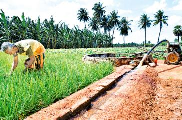 The problem in the peninsula is not inadequate water but the quantity of potable water which is fast running out due to sea water percolating into wells.