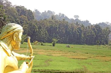 The statue of Meegaha Pitiye Rate Rala aiming at Douglas Wilson. A pinch of past glory
