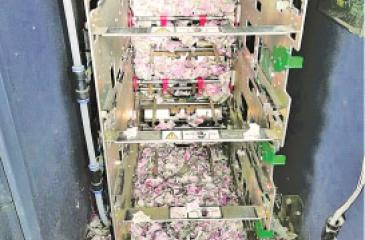 The shredded1.2m rupees - the suspected  culprits are rats.