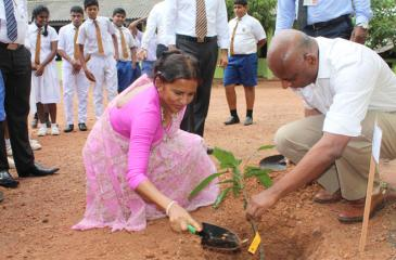 Assetline Leasing Company Limited CEO Naresh Tillekeratne planting a tree celebrating 15th anniversary