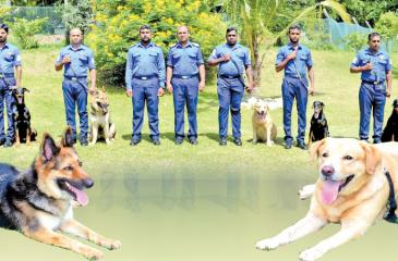 Navy Vet, Lt.Commander Dayaratne and OIC Lieutenant Ayeeshan with dogs and handlers