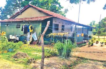 A   better house in Mullikulam