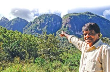 REMINISCING THE TRAGEDY: K.A. Ariyapala, a villager of Koththelena and also an eyewitness to the tradegy, shows the last cliff of the Seven Virgin Hills range where the plane crash occured