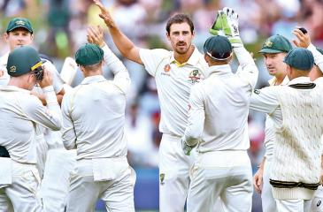 Australia's fast bowler Mitchell Starc (C) celebrates with teammates after taking the wicket of India's batsman Murali Vijay (AFP)