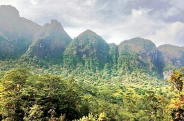 The Seven Virgin hills