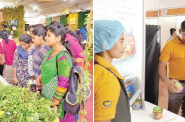 Local and foreign visitors at the Fair. Pix: Saliya Rupasinghe