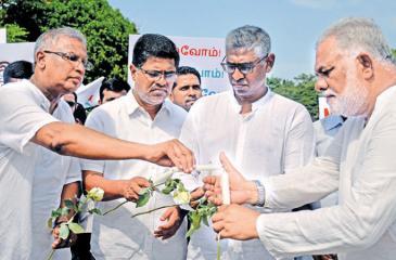 Politicians lighting candles  Pix: Ranjith Asanka