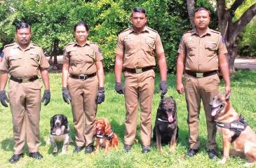 The Police K-9 TEAM: Sergeant Bandara with dog Jude, Policewoman Lanka with Brownie, Constable Sanjeewa with detection dog Alexie, Asanka Silva with tracker dog Betka.
