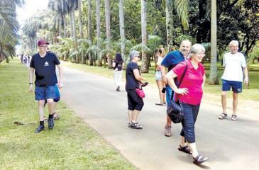 Tourists take a leisurely stroll at the Peradeniya gardens. Pic by Chandani Jayatilleke