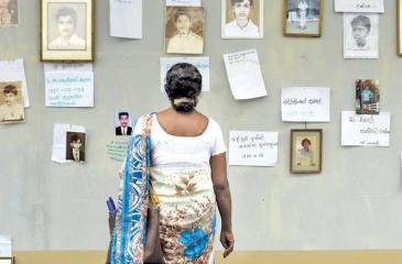 A desperate search: As commemorative events marking International Day of the Disappeared were underway at the OMP office in Colombo on Friday, a mother is seen perusing the memorial wall in search of her missing son's portrait.  (Pic: Sulochana Gamage)