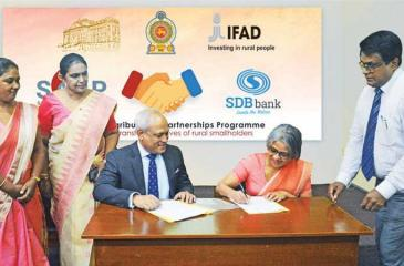 CEO, SDB bank, Thilak Piyadigama and Program Director of SAPP, Dr.Yasantha Mapatuna sign the MoU. Senior Manager, Research and Refinance Department SDB bank, K. V. R. Jeewanthi and Deputy CEO of SDB bank, Delrene Senavirathne look on.