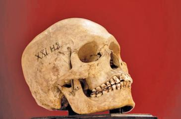 One of nine human skulls thought to be more than 200 years old. Pic courtesy SWNS