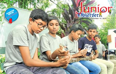 Young zoologists admire a python