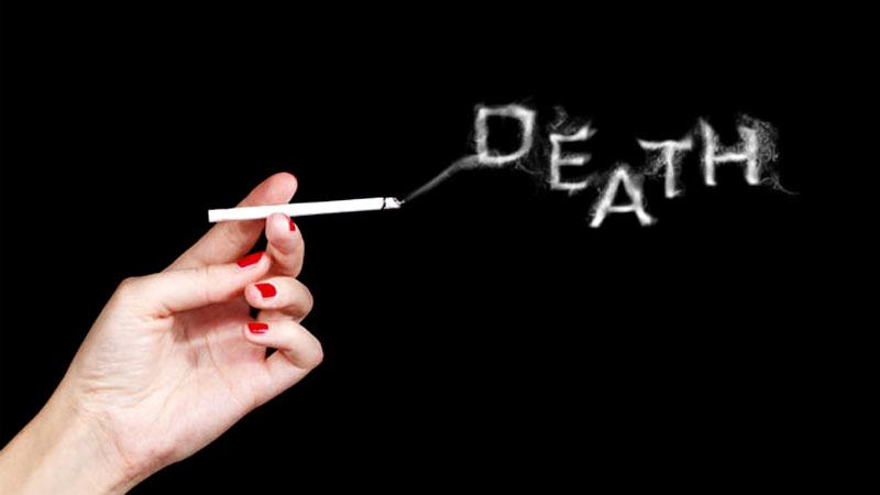 tobacco companies should be held responsible for the deaths and diseases from smoking Tobacco producers should be held to the same environmental cleanup standards as other toxic waste products, according to a special communication published in tobacco control.