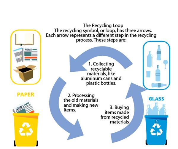 The Environment Recycling Sunday Observer