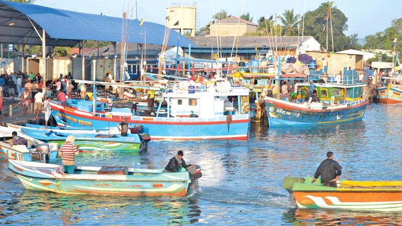 It was not only the seafood exporters who were affected due to the  removal of GSP+. It also had a negative impact on the people in many  sectors of the industry from fishermen, boat owners to helpers.