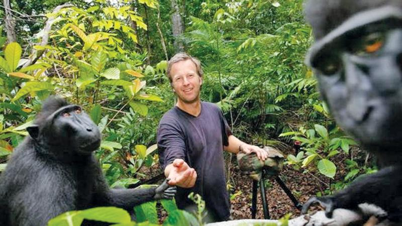 David Slater said that he had to earn the trust of the monkeys over several days before venturing close enough to get the selfie