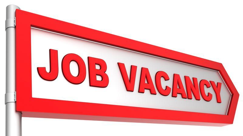 Job vacancies for 496,000   Sunday Observer