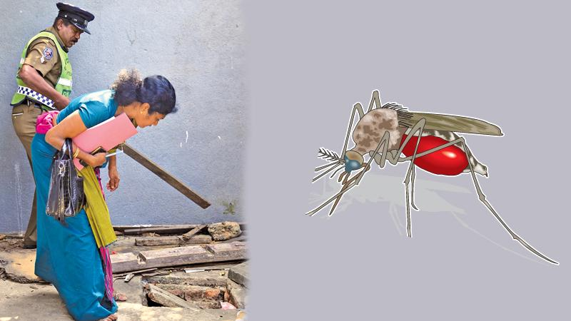 Exploring garbage – the team found possible mosquito breeding grounds in some households
