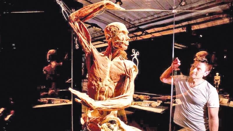 A dancing cadaver in a previous Body Worlds exhibition.