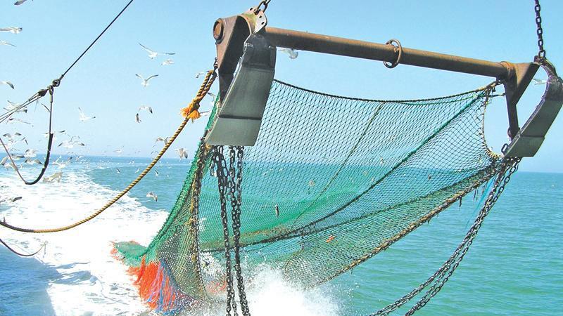 Forbidden bottom trawling