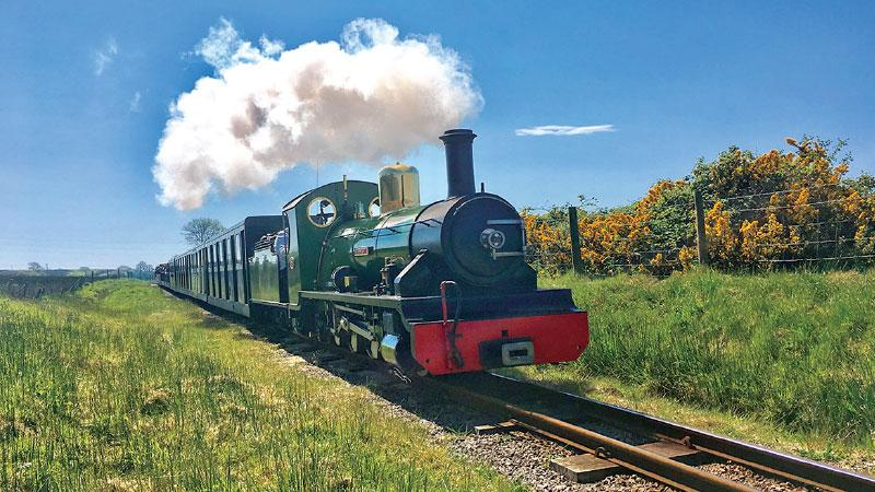 A Steam train in action