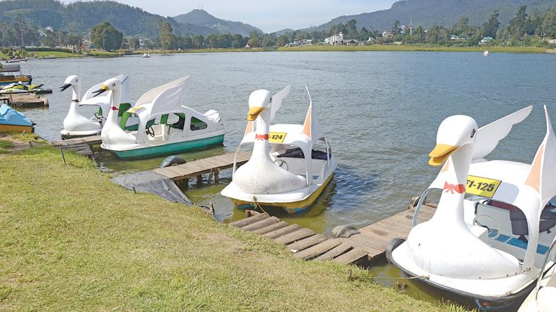 COOL COUNTRY: A breathtaking view of placid Lake Gregorym with Swan like boats waiting for you