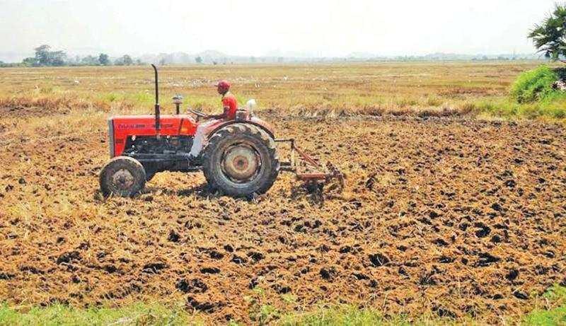 Ampara paddy lands being tilled for cultivation