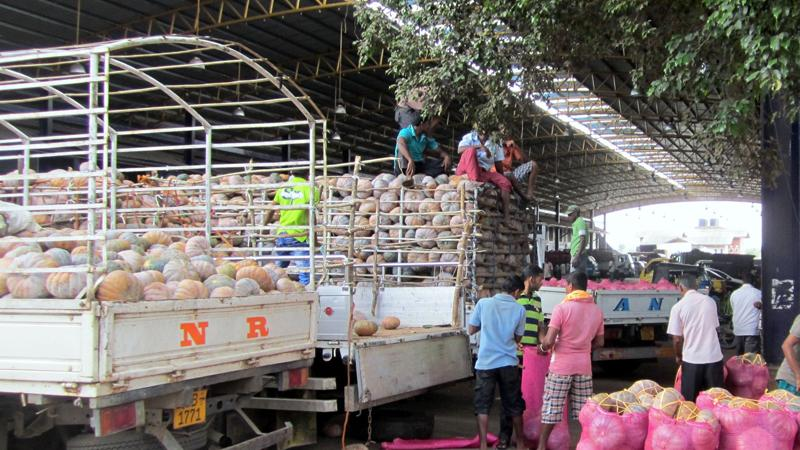Pumpkins being unloaded at the Dambulla Economic Centre  File pic
