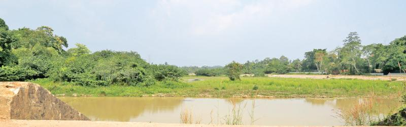 The wetlands as they now appear