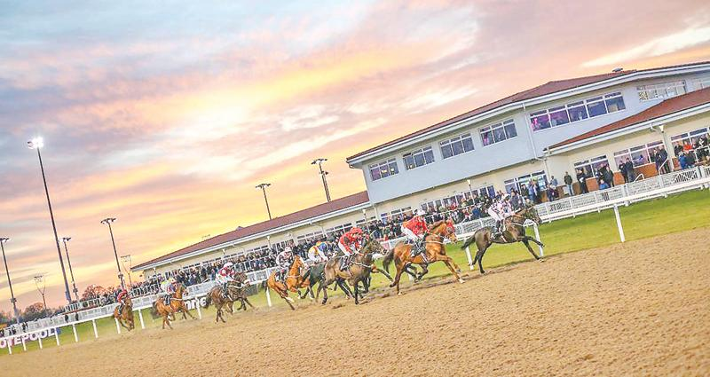 Sri Lanka the Wonder of Asia Novice Stakes (5) (on Thu 9 May 2019 at Chelmsford City)
