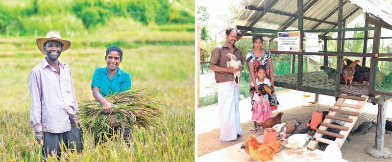 Family farmers in Sri Lanka. Pix: Courtesy FAO/Sri Lanka