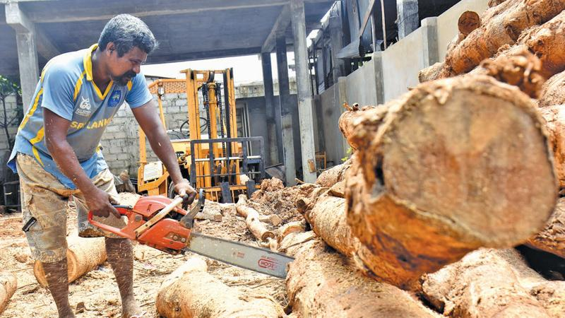 The possible ban on mobile sawmills might stymie the expansion of the industry making it a dying trade