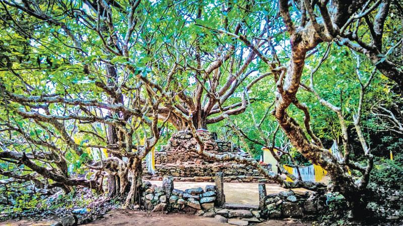 Sasseruwa historic temple