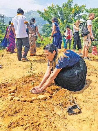 A blogger plants a tree.