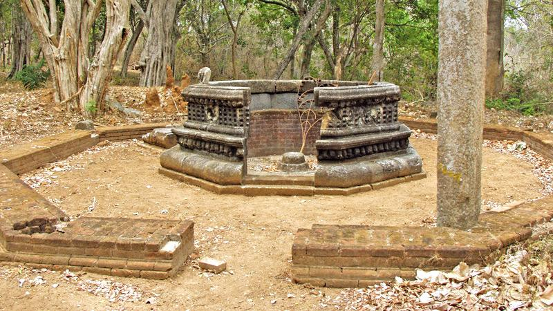TREASURED DISCOVERY: Oval-shaped Bodhigaraya with intricate carvings at Padikemgala