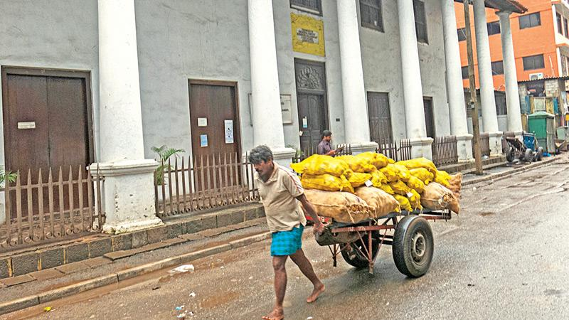 THE JOB: A cart puller pulls a cart loaded with goods in one of the lanes in Pettah