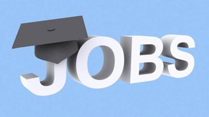 Deadline for unemployed grads job application extended