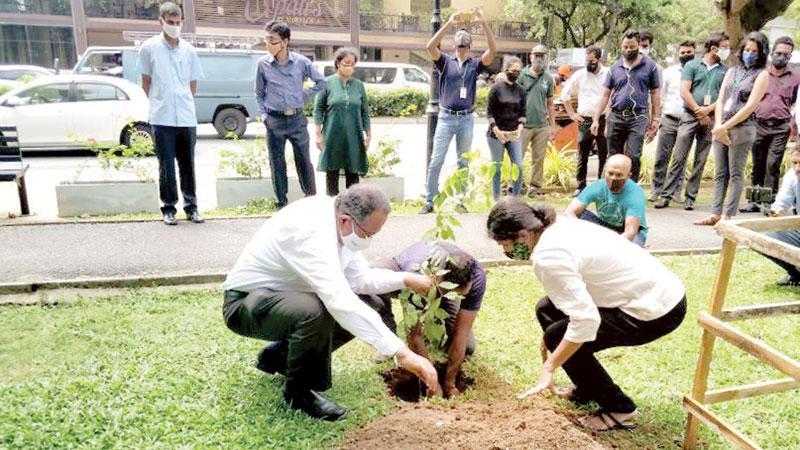 Puritas and Haycarb Managing Director, Rajitha Kariyawasan and Puritas senior management participate in a tree planting campaign.