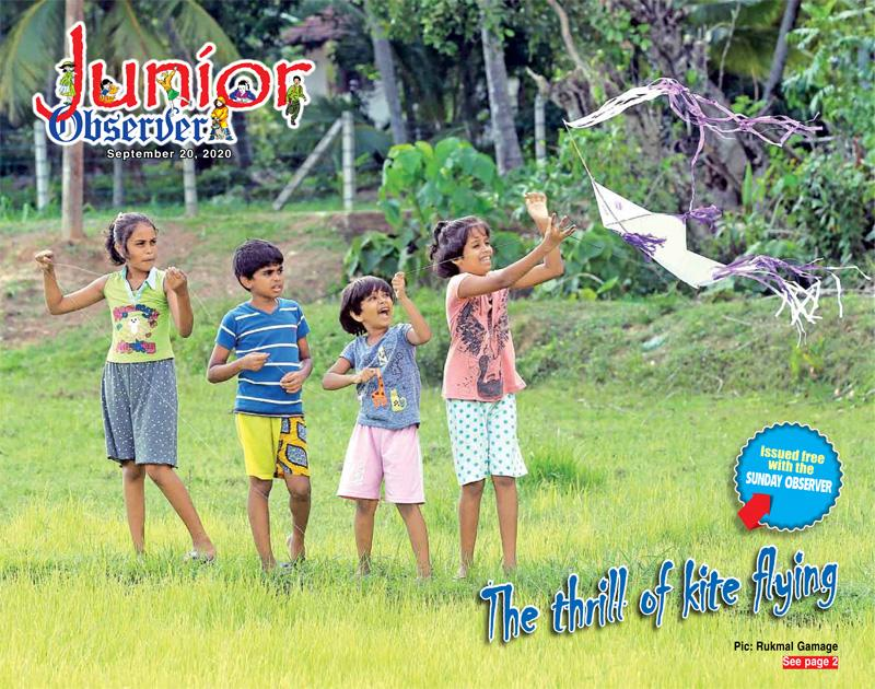 The thrill of kite flying