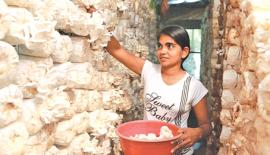 A woman at work. Source: http://blogs.worldbank.org/jobs/psd/young-women-and-work-international-womens-day