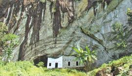 Massive rock of Batadombalena cave, a home of 'Balangoda Man',  a clump of banana trees in the   foreground of the cave