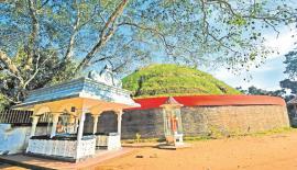 A TREASURED DISCOVERY: A Stupa of Deliwela Kota Vehera