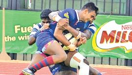 Kingswood College player Weligampola is held by two defenders from St. Joseph's College in their Milo trophy semi final rugby match at the Sugathadasa stadium in Colombo yesterday. Pic: Saman Mendis