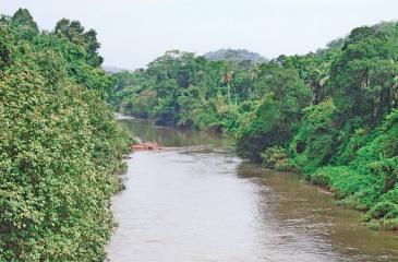 The Sitawaka Ganga flows through Talduwa